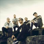 The Amity Affliction - cover art