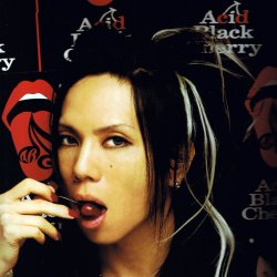 Acid Black Cherry - lyrics