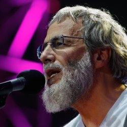 Cat Stevens - lyrics